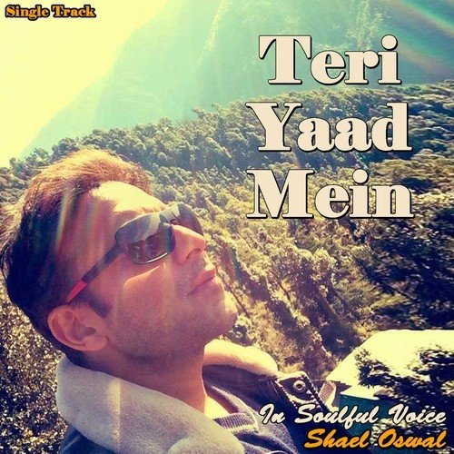 Jabhi Teri Yaad Song Downloadmp3: Teri Yaad Mein Song By Shael Oswal From Teri Yaad Mein