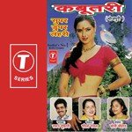 Listen to tara bano faizabadi songs on saavn for Tara bano faizabadi