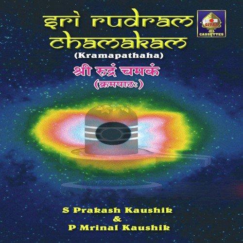 sri rudram lyrics in tamil pdf