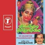 Telugu cinema Review - Sri Anjaneyam - Nitin Charmy - Krishna Vamsi
