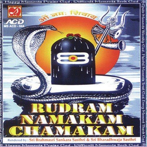 Sri rudram chamakam