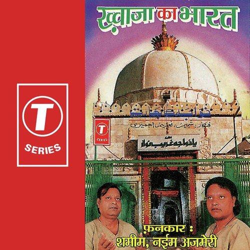 bharat mein hindi ka bhavishya Bharat mein patrakarita language: hindi singhasan ka nyay writer : aadhunik bharat : parampara aur bhavishya writer : alok mehta.