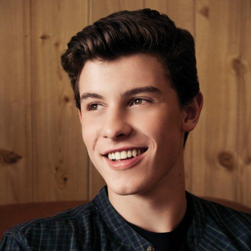 Illuminate Deluxe Shawn Mendes: Listen To Shawn Mendes Songs On Saavn