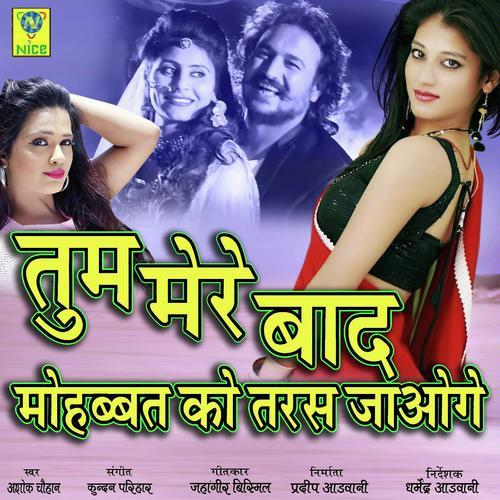 Tum Mere Baad Mohabbat Ko Taras Jaoge Song - Download Tum Mere Baad