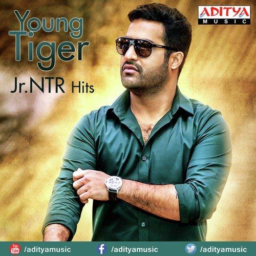 Young Tiger Jr. NTR Hits