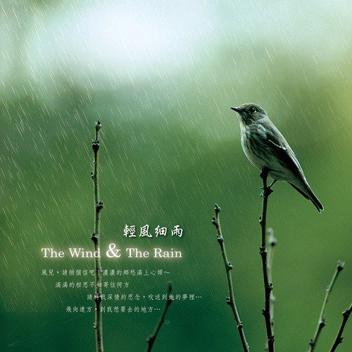 I Am So Lonely Song - Download The Wind & the Rain Song