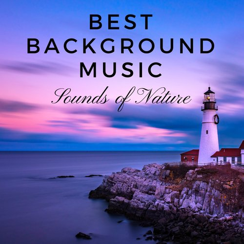 Best Background Music Song - Download Best Background Music: Sounds