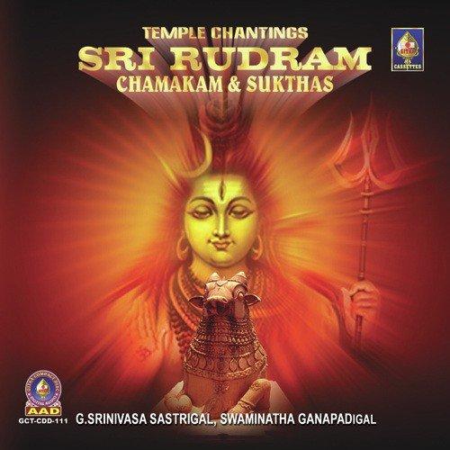Lord shiva songs shri rudram chamakam yajurveda youtube.