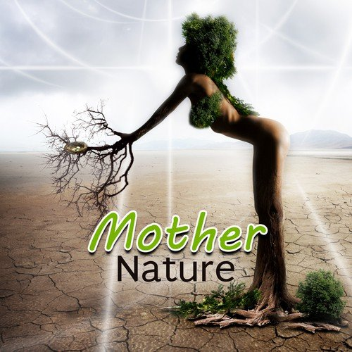 Forest Ambient Song - Download Mother Nature – Soothing Nature Music