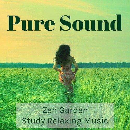 Amazon. Com: deep natural music instrumental music, massage.