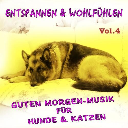 Entspannen Und Wohlfühlen Vol4 Guten Morgen Musik Für