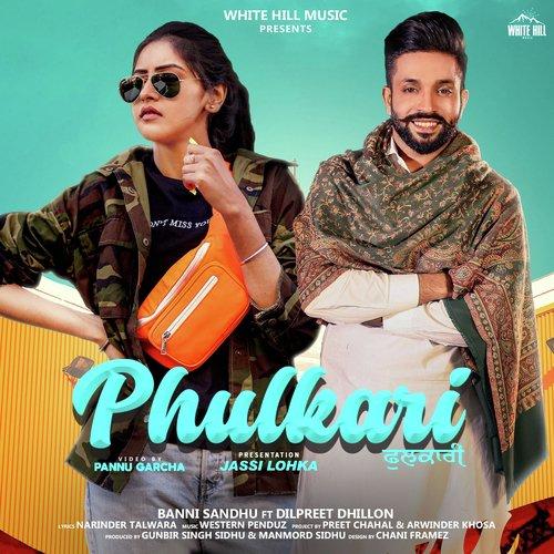 Phulkari cover image