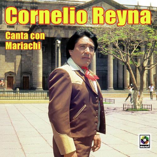 Vestida Y Alborotada Lyrics Cornelio Reyna Only On Jiosaavn