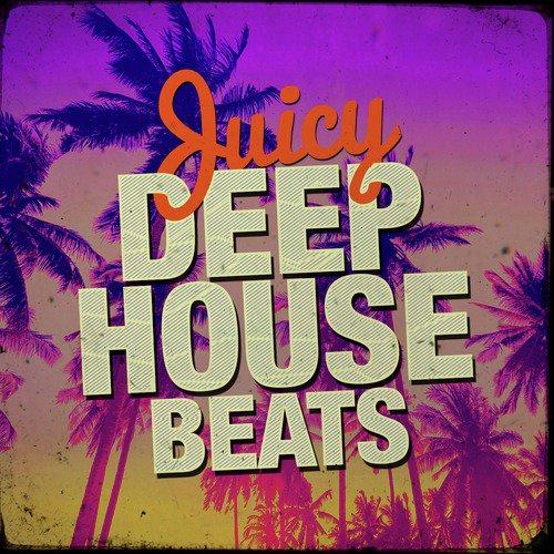 Download deep house loops, deep house samples, pure house, deep.