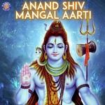 Shankar Aarti - Lavthavti Vikrala