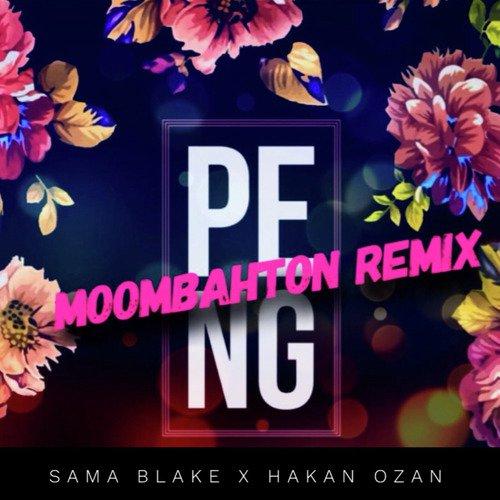Peng Moombahton Remix (Full Song) - Sama Blake, Hakan Ozan