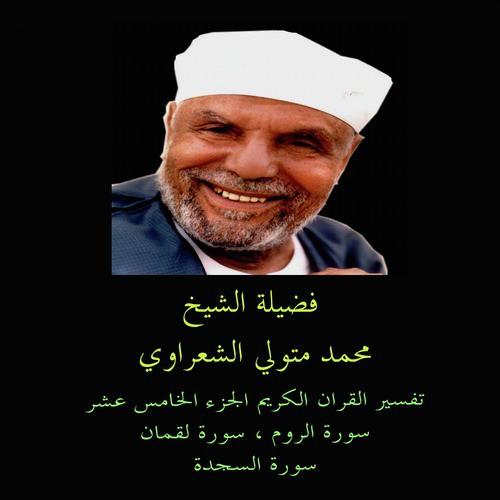 Sourat AL Rum 6 Song - Download Tafsir AL Quran AL Karim: AL Rum