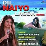 Dil Naiyo Lagda Remix Songs