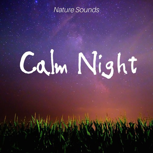 Get Positive Song - Download Calm Night: Nature Sounds