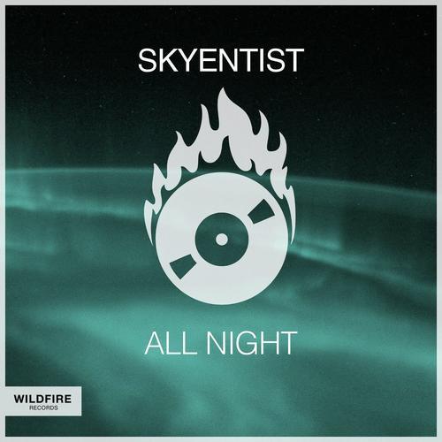 1 night instrumental download