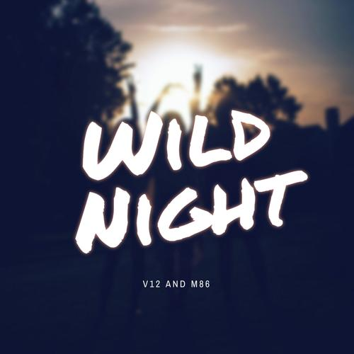 Listen to Wild Night Songs by V12 and M86 - Download Wild