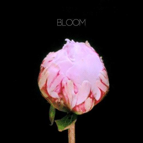картинка анимация распускается цветок пиона конечно идёт беззаботном