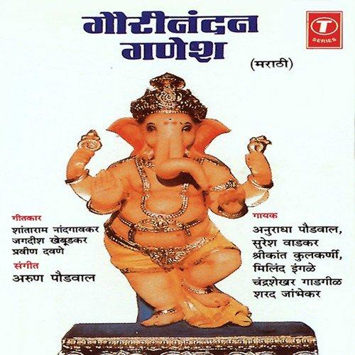 Chandrashekhar Gadgil