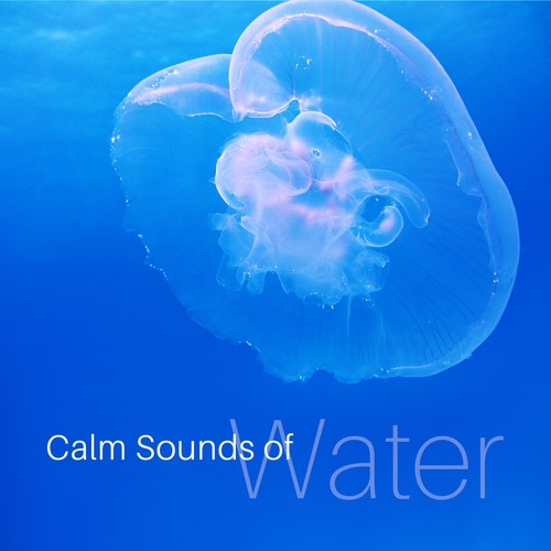 Whispering Wind & Small Waterfall Song - Download Calm