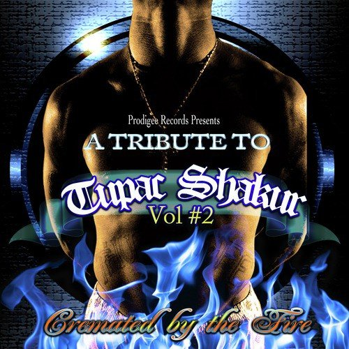 Freedom Song - Download A Tribute to Tupac Shakur, Pt  2 Song Online
