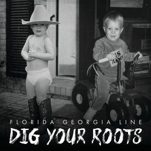 florida georgia line cruise remix download free