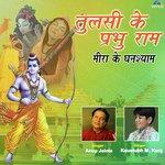 Tulsi Ke Prabhu Ram Meera Ke Ghanshyaam Songs