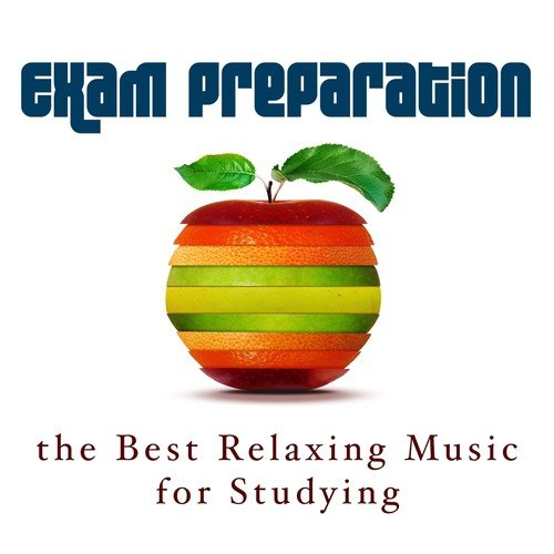 Best Instrumental Music For Studying Download
