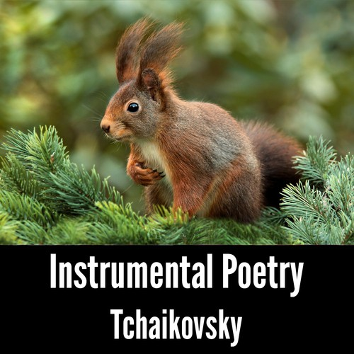 Old french song tchaikovsky transcrition for cello sheet music.