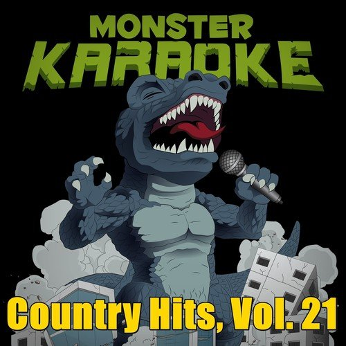 Becoming Phill) You belong with me lyrics karaoke