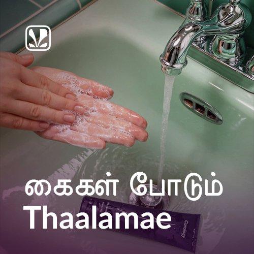 Kaigal Podum Thaalamae